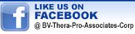 bv-facebook